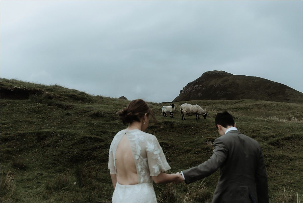 sheep and elopement couple Isle of skye